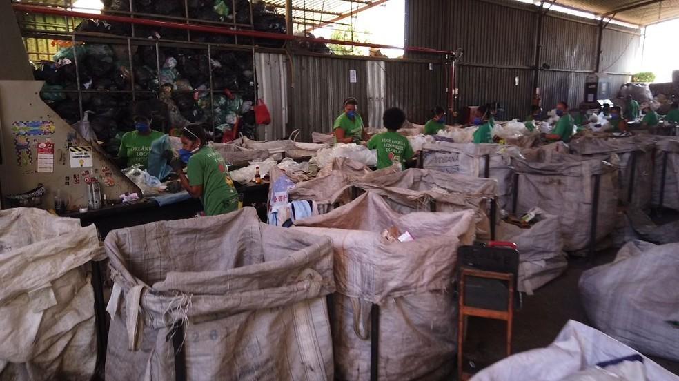 Cooperativa de recicláveis calcula prejuízo de R$ 500 mil após incêndio em Orlândia (SP) — Foto: Marcelo Moraes/EPTV