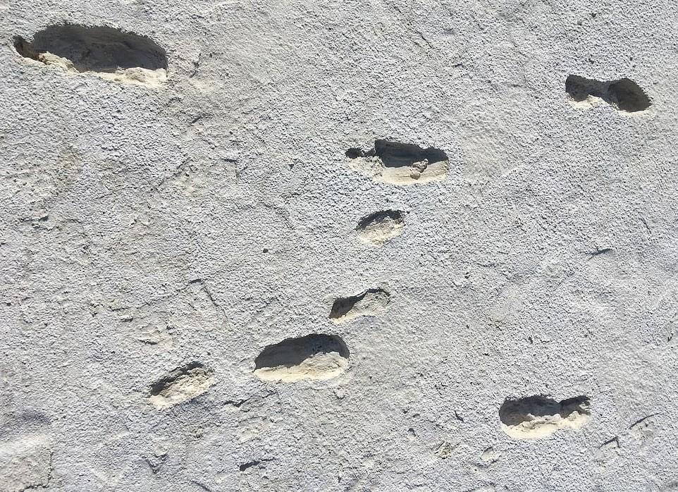 Pegadas encontradas em lago seco no Novo México têm idade entre 11.500 e 13.000 anos (Foto: M Bennett, Bournemouth University., Author provided)