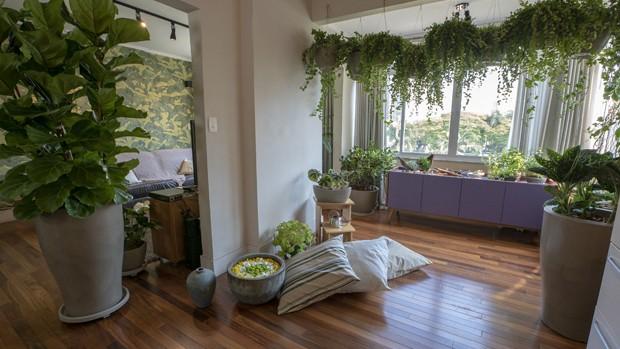 5 dicas para não errar na jardinagem (Foto: Divulgação)