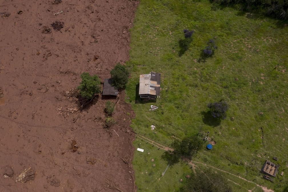 27 de janeiro - Imagem aérea mostra terreno parcialmente coberto pela lama da barragem da Vale, dois dias após o rompimento — Foto: Mauro Pimentel/AFP
