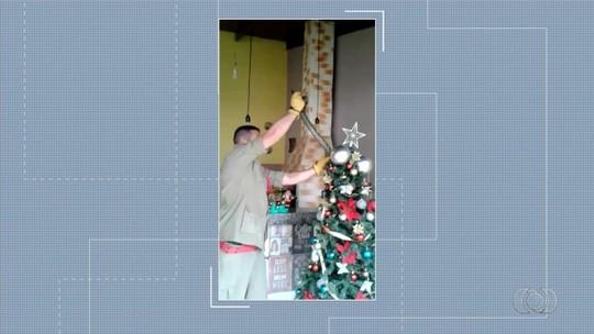 Professora relata reação após marido encontrar cobra enrolada na árvore de Natal, em Inhumas: 'Pânico'
