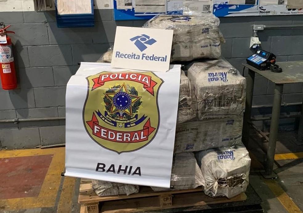 Mais de 600 Kg de cocaína são apreendidos em carga no porto de Salvador. — Foto: Polícia Federal / Divulgação