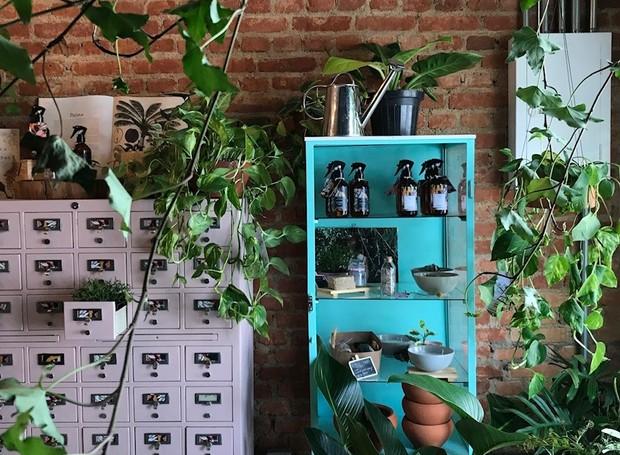 Botanista (Foto: Divulgação)