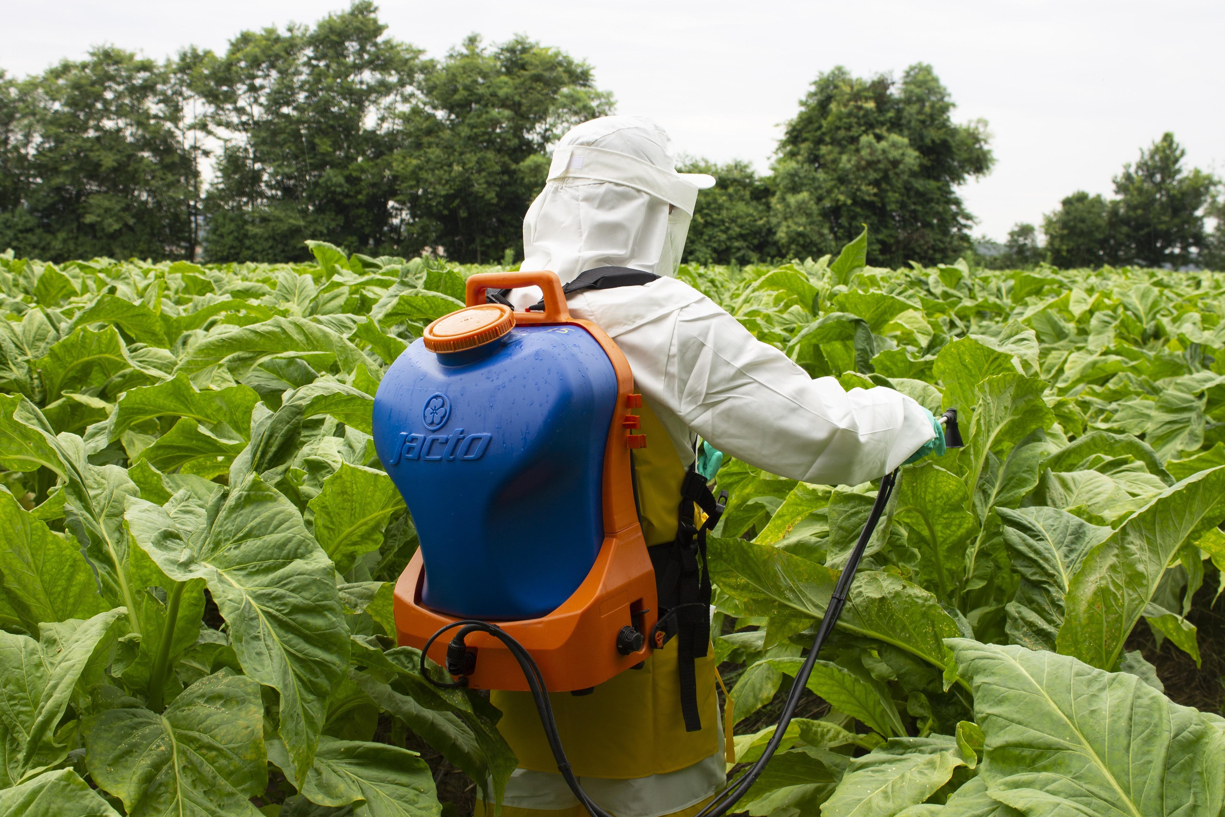 Cursos gratuitos para o setor agrícola serão realizados em Aracaju - Notícias - Plantão Diário