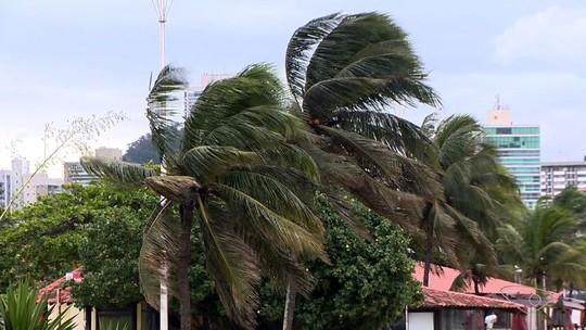 Ventania no ES derruba árvore em Cachoeiro, semáforo em Vitória, e inclina casa em Marataízes