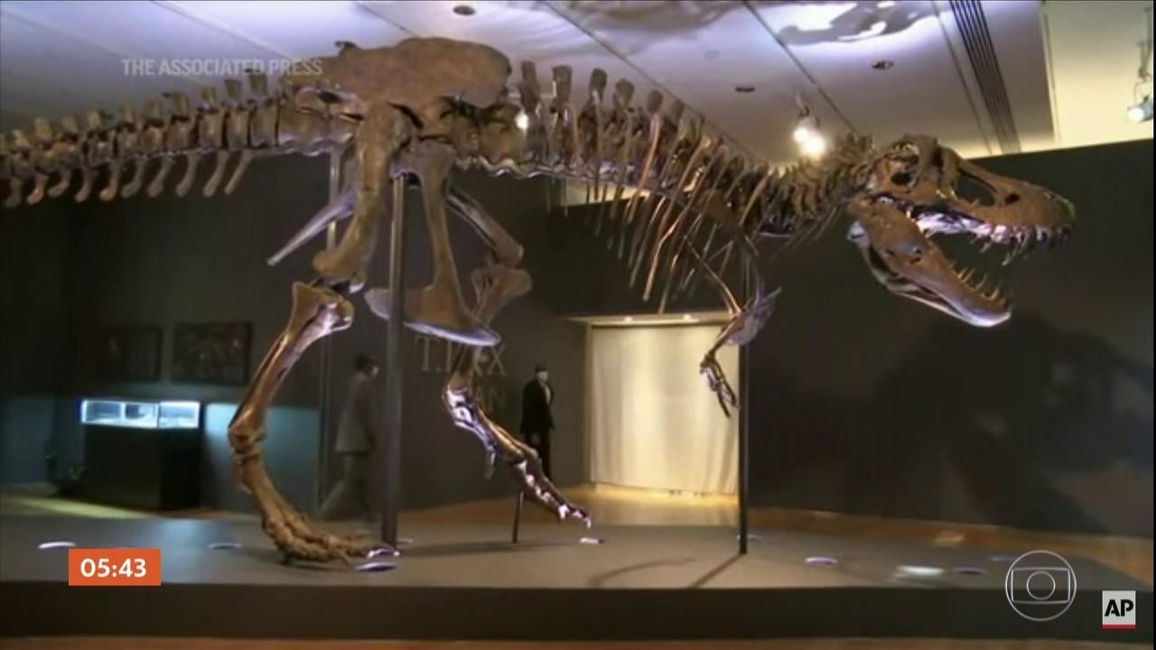 Casa de leilões vai colocar à venda um dos maiores esqueletos de Tiranossauro Rex