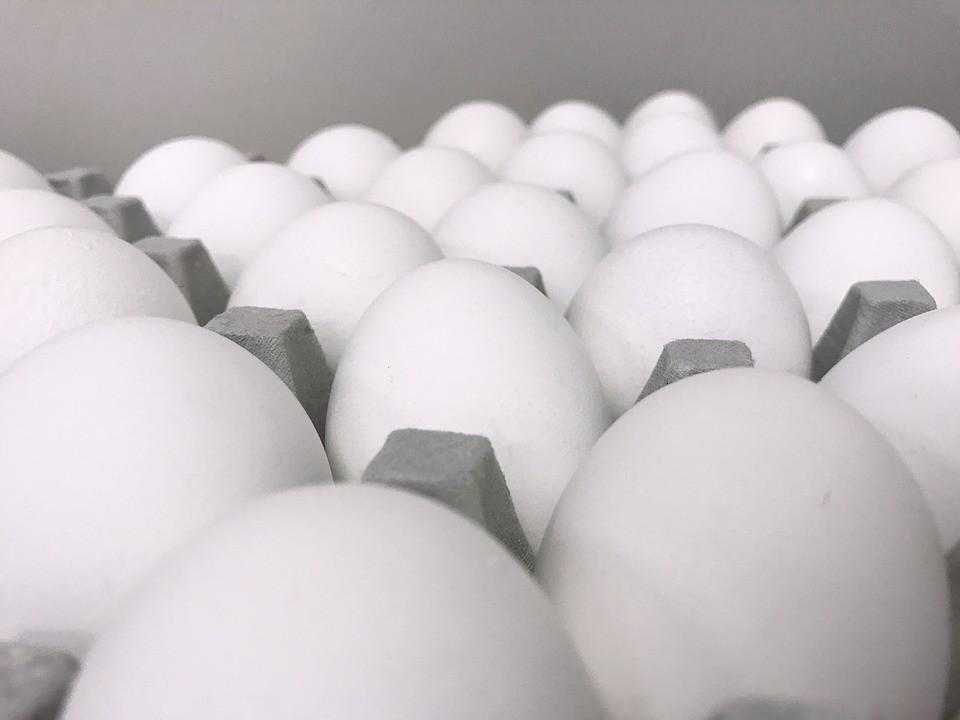 Ovos de galinha poderão ser usados para desenvolver remédios contra o câncer (Foto: Max Pixel/Creative Commons)