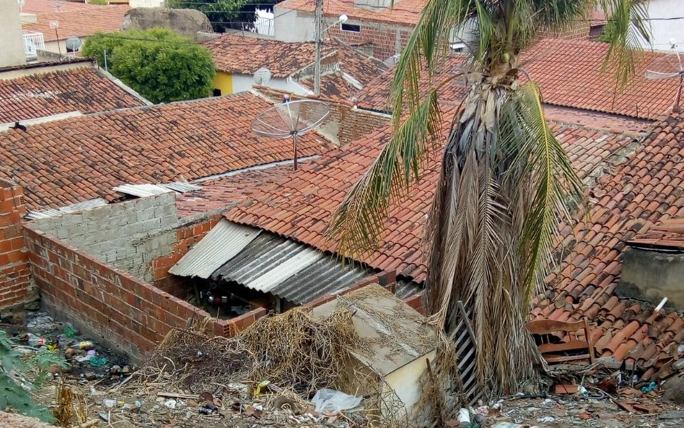 Casa fica em terreno acidentado e jumento subiu no telhado por morro de pedras, em Cajazeiras (Foto: Tereza Rangel/Arquivo Pessoal)