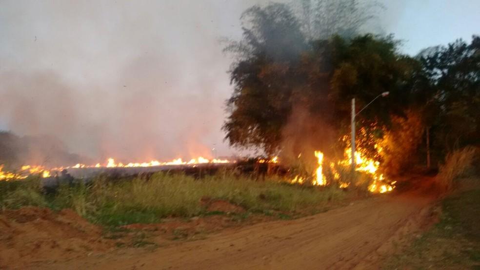 Fogo atingiu área de pastagem (Foto: Base de Socorristas/Junqueirópolis)