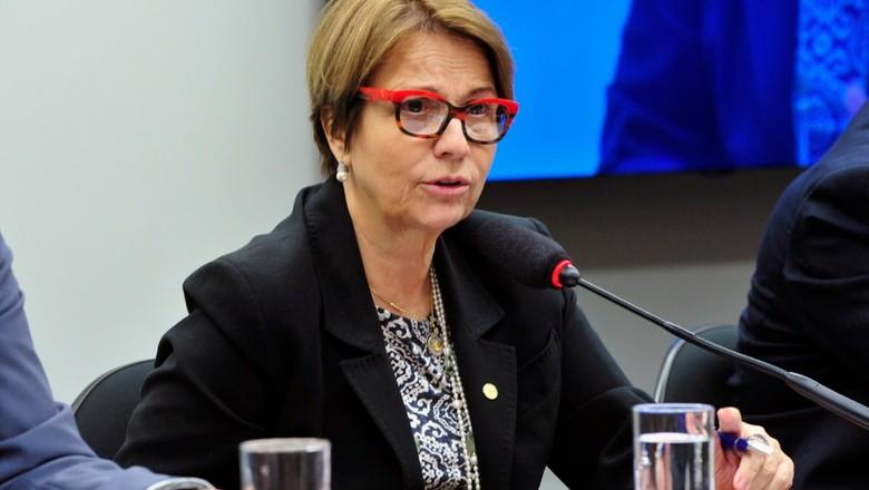 tereza-cristina-ministra-da-agricultura-bolsonaro (Foto: Luis Macedo / Câmara dos Deputados)
