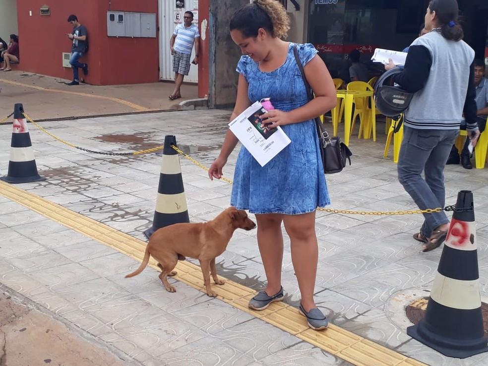 Cão e dona voltaram para casa juntos.  — Foto: Magda Oliveira/G1