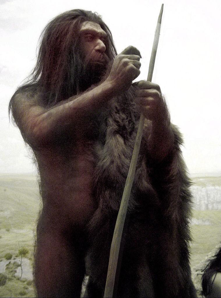 Representação de Homem de Neandertal e lança (Foto: Creative Commons Attribution-ShareAlike 3.0 )