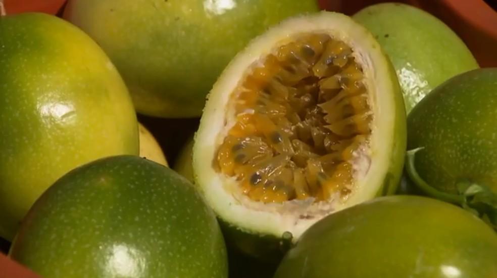 Maracujá foi uma das frutas que sofreu maior alta de preços.  — Foto: Reprodução/RPC