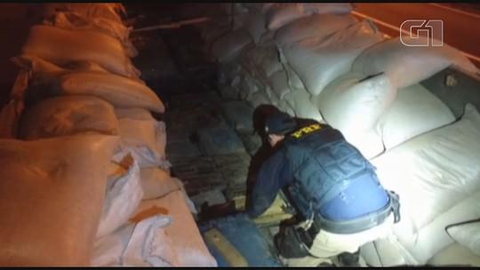 PRF apreende quase 4 toneladas de maconha escondidas em carga de feijão em SP