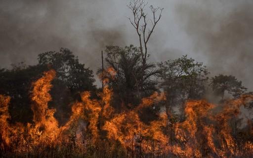Fogo e desmatamento: as marcas do cenário ambiental brasileiro em 2020