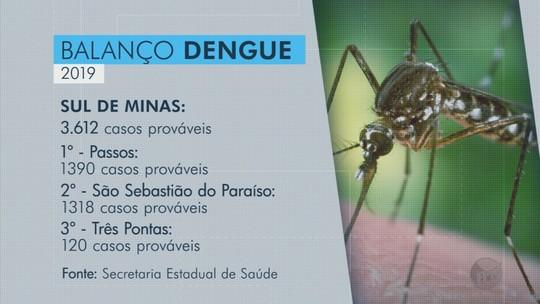 Passos e São Sebastião do Paraíso concentram quase 75% dos casos de dengue no Sul de MG