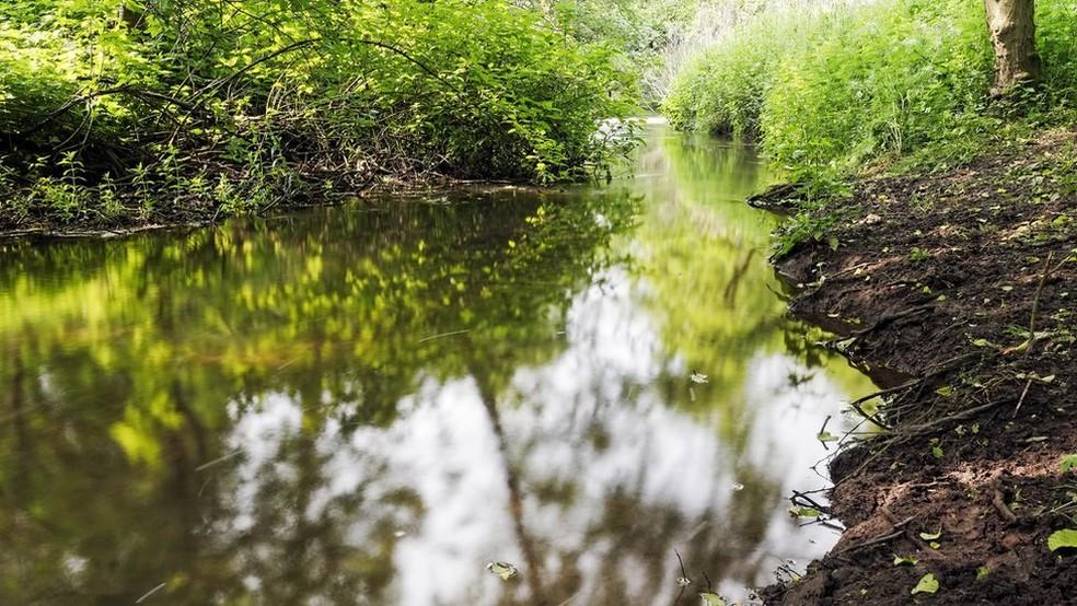 Lei também determina preservação de áreas ecologicamente sensíveis, como nascentes e margens de rios (Foto: Getty Images)