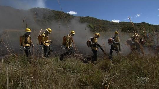 Quilombolas são treinados para combater incêndios usando o próprio fogo, em Cavalcante