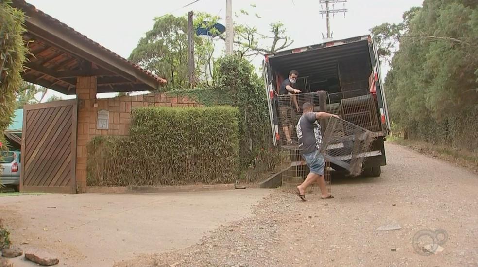 Polícia apreendeu objetos de chácara onde foram encontrados animais vítimas de maus-tratos em Boituva (SP) — Foto: Polícia Civil/Divulgação