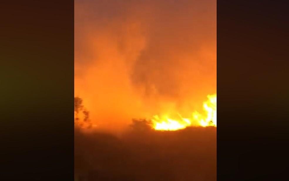 Em Eunápolis, o incêndio atingiu a vegetação do Bairro Jardins, região de alto poder aquisitivo da cidade.  — Foto: Reprodução / Redes Sociais