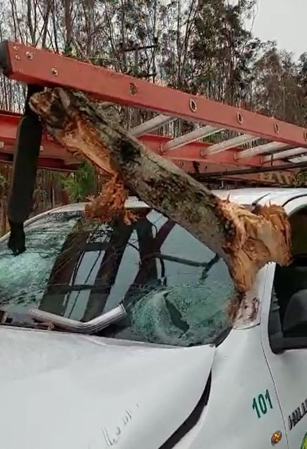 Carro foi atingido por galhos de árvore derrubada em vicinal que liga Tupa a Quatá — Foto: Arquivo pessoal