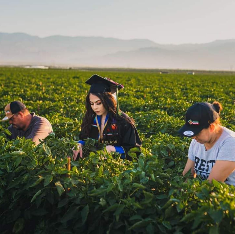 Filha de trabalhadores rurais homenageia pais em ensaio de formatura nos EUA; veja fotos