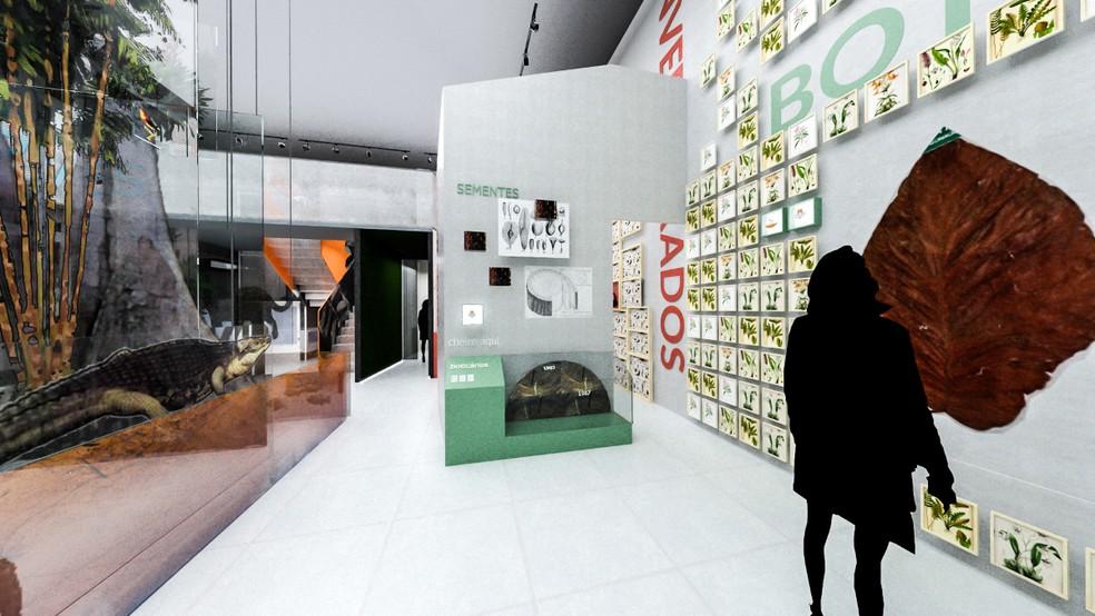 Novo projeto divide Casa da Ciência em dois pisos, com novas exposições e mais interatividade — Foto: Divulgação/Inpa