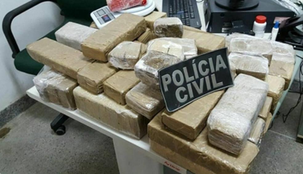 Drogas foram apreendidas em ações policiais no Ceará.  (Foto: SSPDS/Divulgação)