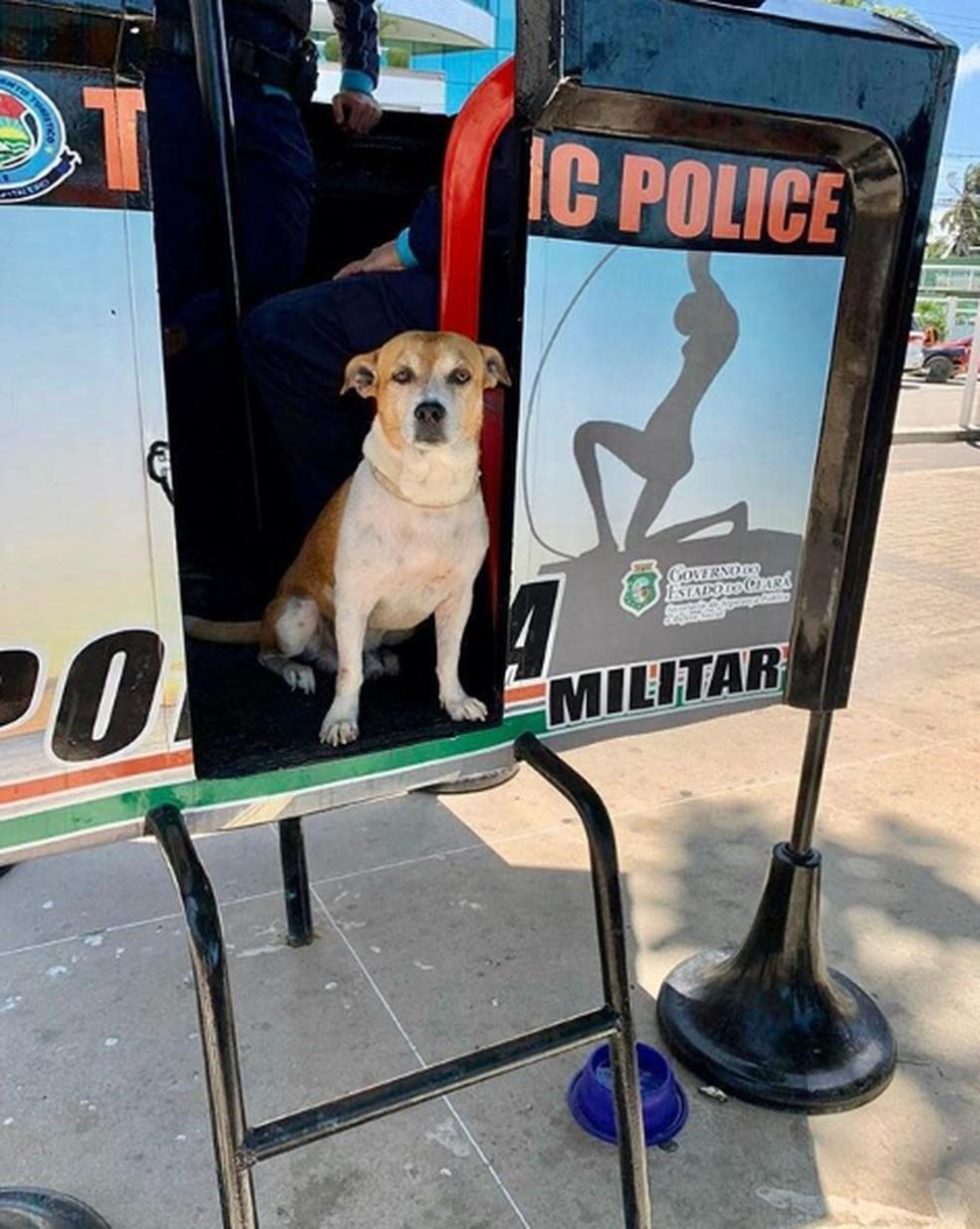 Major passa o dia com os policiais e até participa de ações e abordagens — Foto: Reprodução
