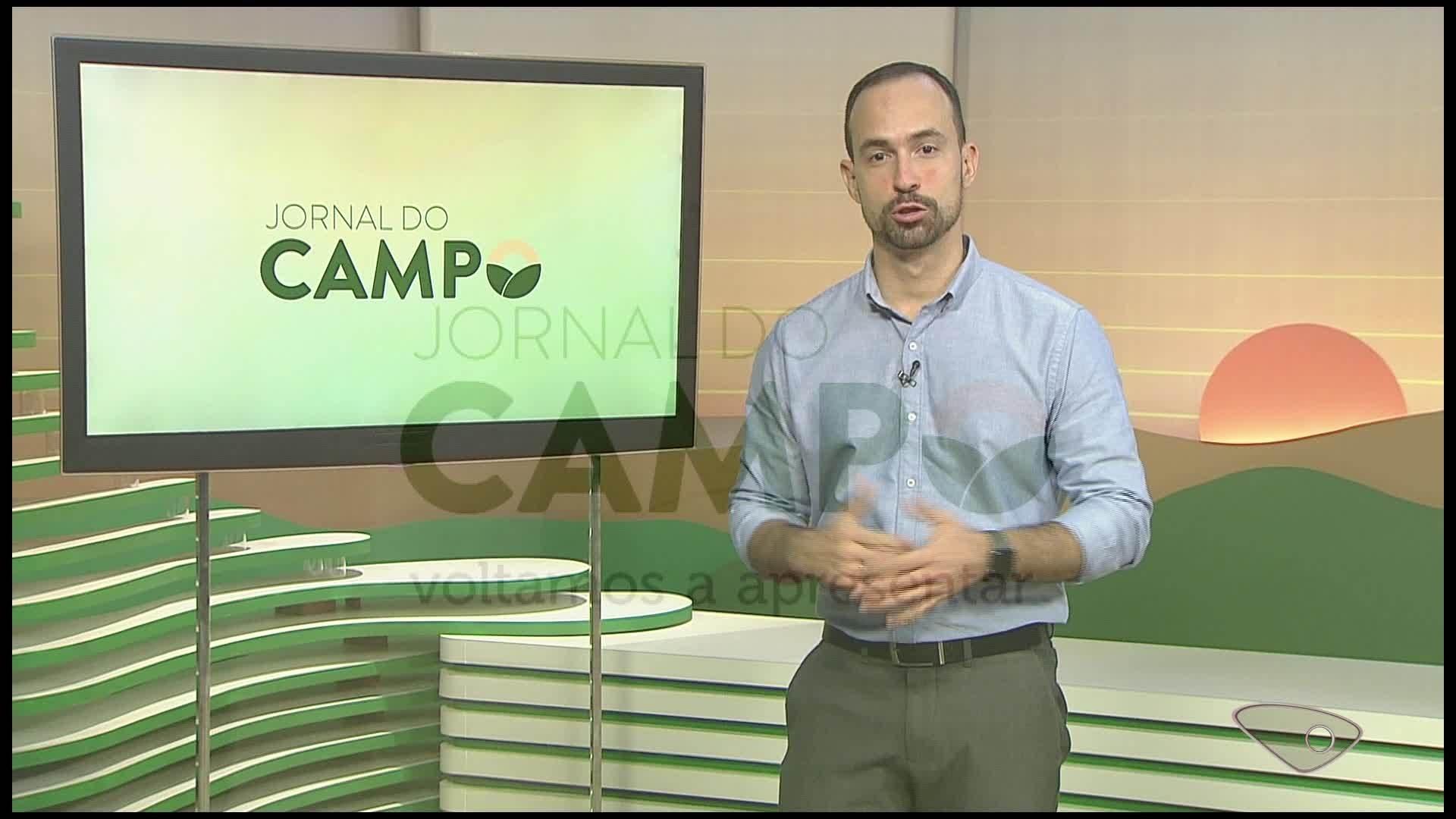 VÍDEOS: Jornal do Campo ES de domingo, 9 de agosto