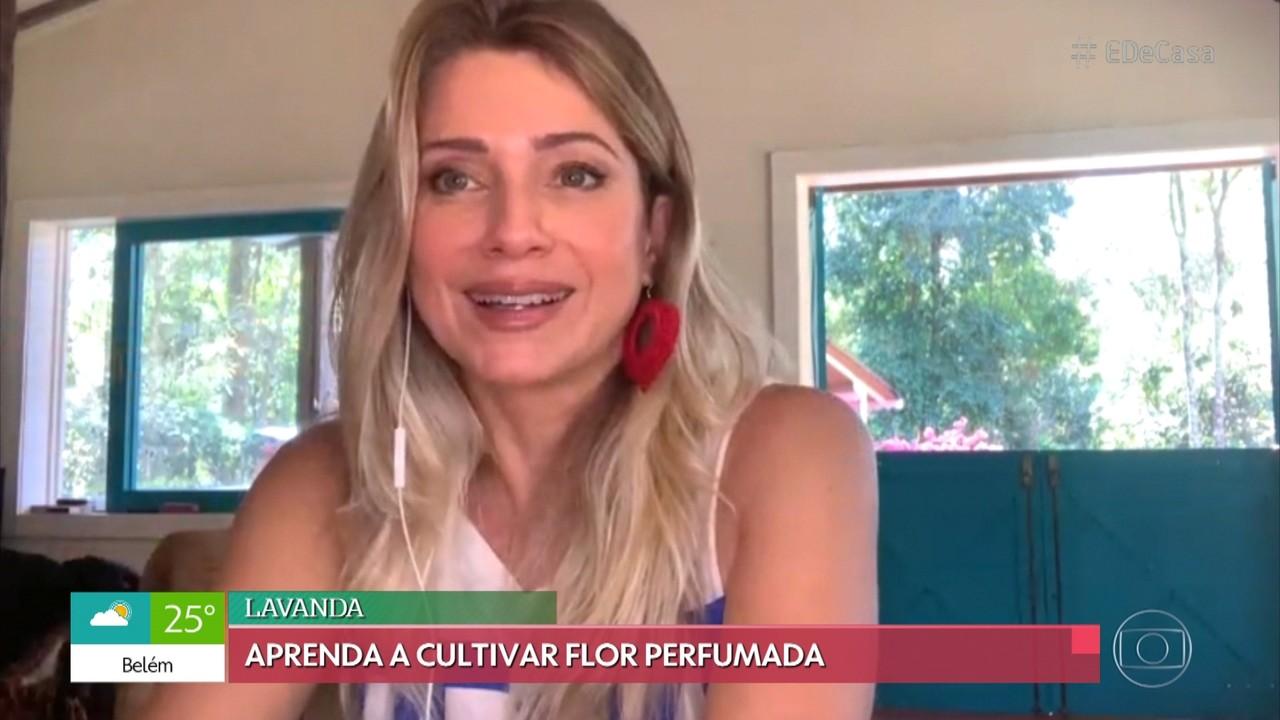 Letícia Spiller aprende a cultivar lavanda