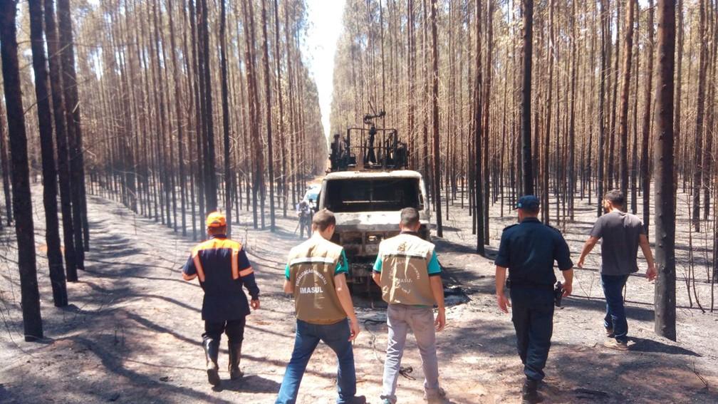 Técnicos do Imasul e da Defesa Civil na área do incêndio em Ribas do Rio Pardo, MS (Foto: Flávia Galdiole/TV Morena)