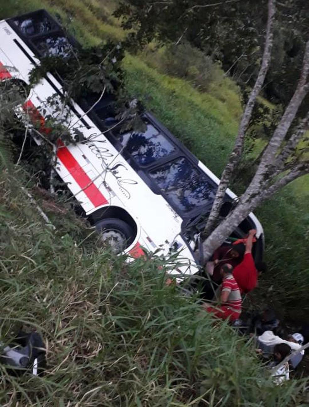 Ônibus despenca em ribanceira e deixa feridos no Vale do Ribeira — Foto: Reprodução/Eldorado em Foco