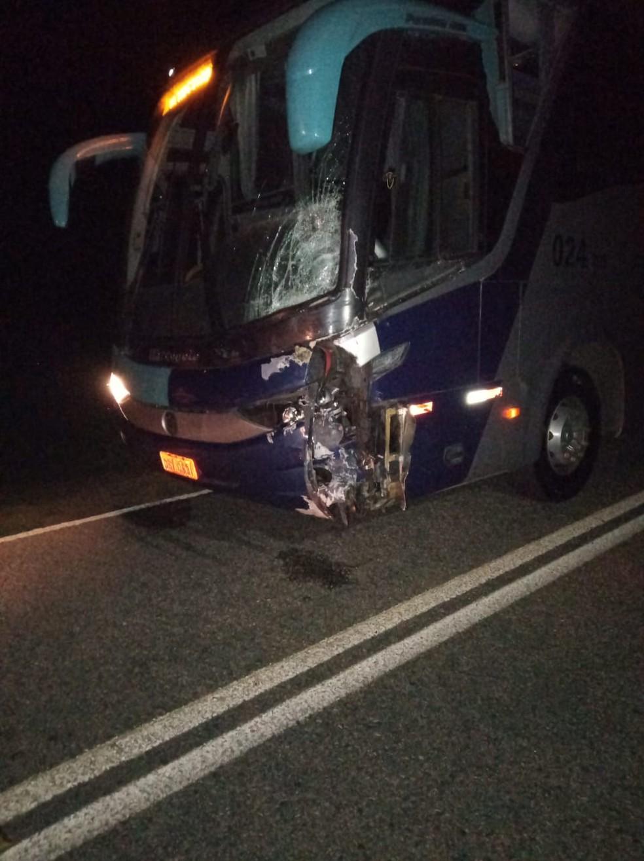 Motorista do ônibus teve ferimentos leves no acidente. — Foto: Arquivo pessoal