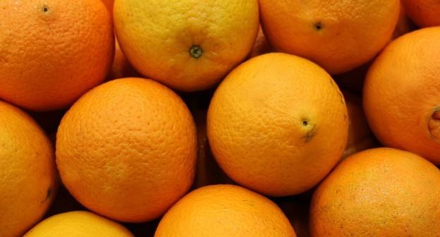 Chuva trouxe otimismo para a florada da laranja, avalia Cepea