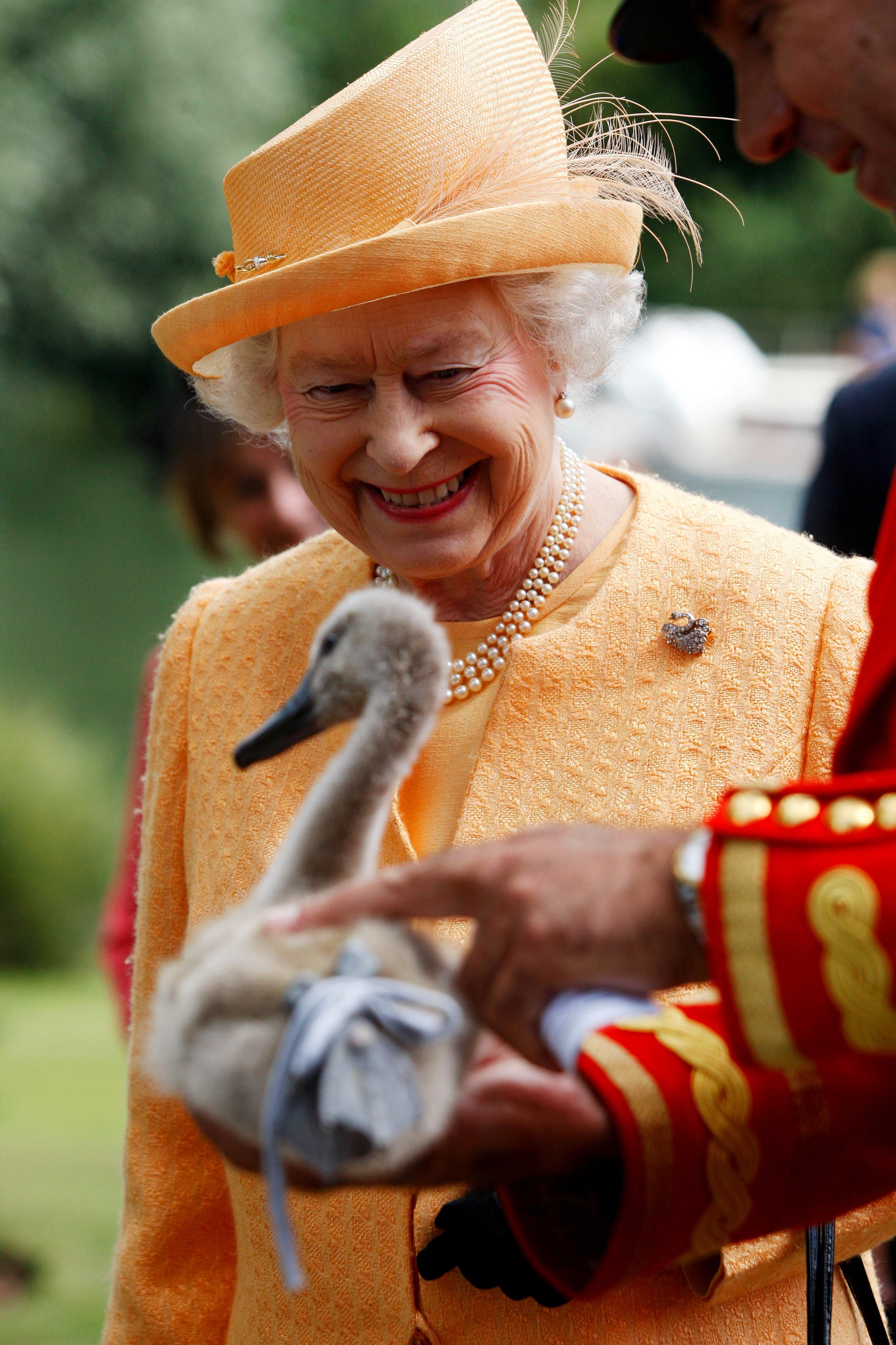 Rainha Elizabeth II durante um recenseamento de um cisne no rio Tâmisa, em 20 de julho de 2009, perto de Windsor, Inglaterra (Foto: Getty Images)