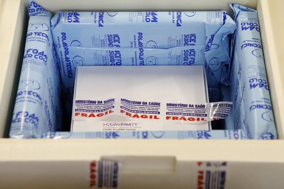 Primeiro lote de vacinas da Pfizer chegou a Pernambuco, nesta segunda (3) — Foto: Governo de Pernambuco/Divulgação