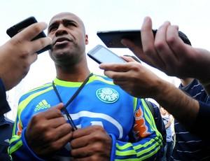 Marcos Assunção Palmeiras (Foto: Marcos Ribolli / Globoesporte.com)
