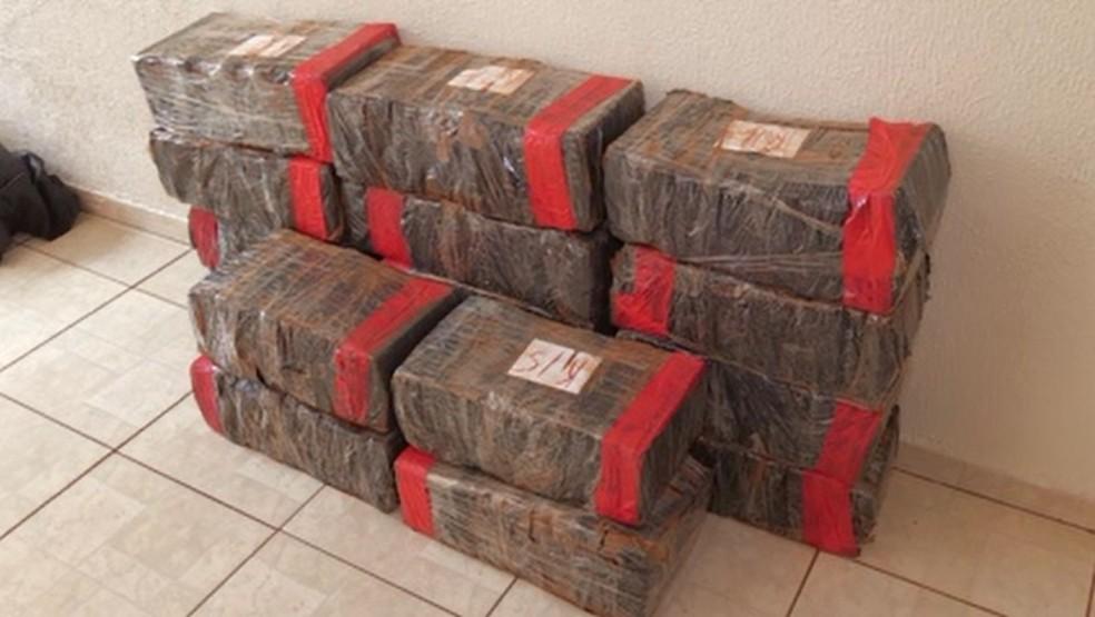 Meia tonelada de maconha foi apreendida pela Denarc de Maringá — Foto: Reprodução/RPC