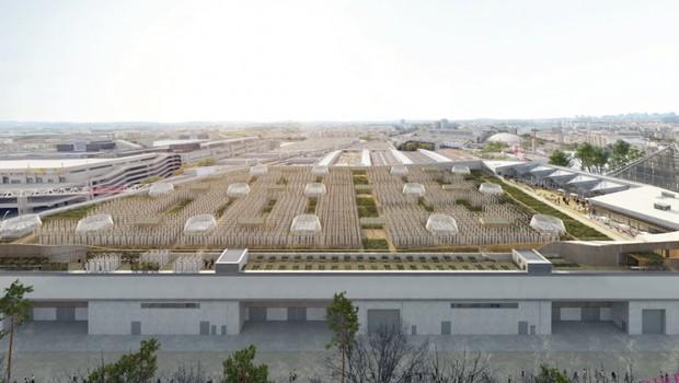 A fazenda urbana será administrada por cerca de 20 jardineiros que usarão métodos totalmente orgânicos: sem uso de pesticidas ou produtos químicos (Foto: Divulgação)