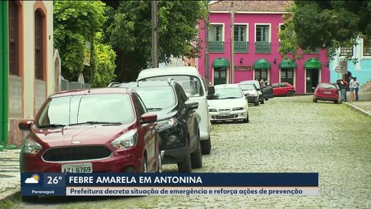 Prefeitura de Antonina decreta situação de emergência pela febre amarela