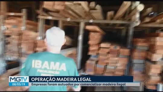 Madeireiras do Triângulo Mineiro são autuadas pelo Ibama por comércio ilegal