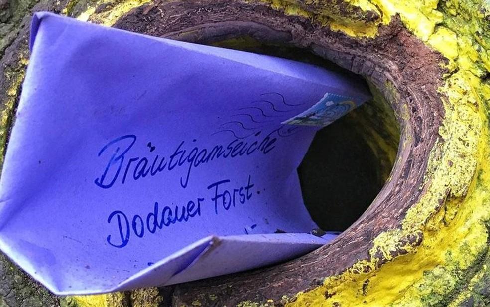 Assim como Denies, que enviou o envelope roxo, pessoas do mundo todo escrevem cartas endereçadas ao carvalho (Foto: Eliot Stein/BBC)