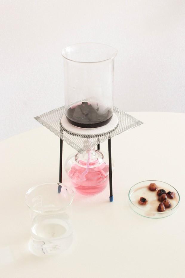 Designer cria embalagens biodegradáveis a partir da alga (Foto: Divulgação)