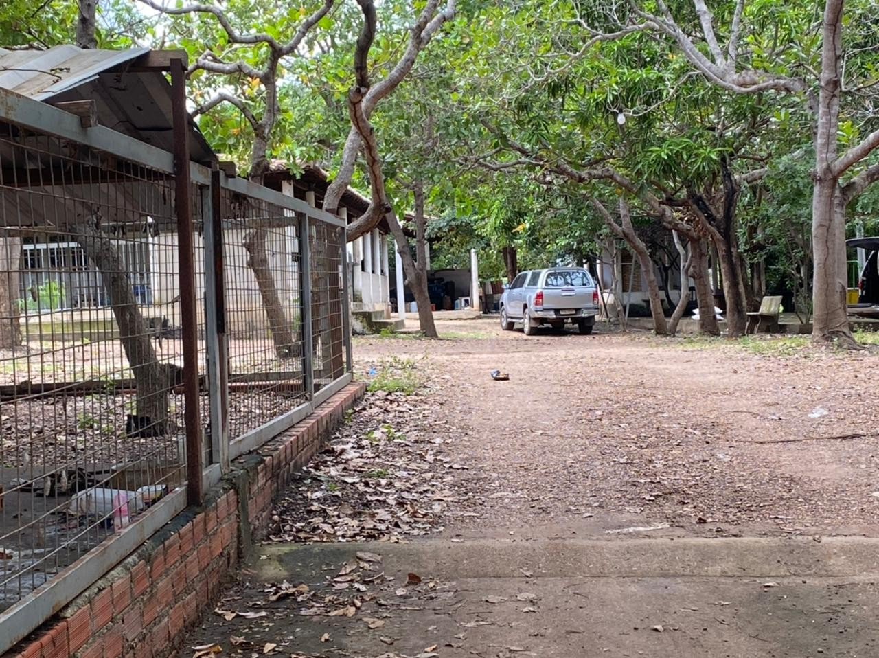 Casal é encontrado morto em chácara na Zona Sul de Teresina e polícia investiga suspeita de feminicídio