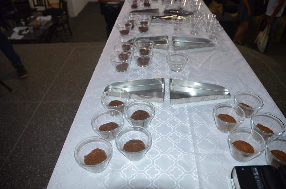 Amostras de café na final de concurso (Foto: Rogério Aderbal/G1)
