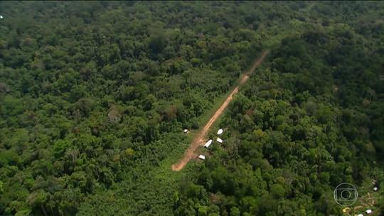 Voo desaparecido com indígenas na Floresta Amazônica era clandestino, diz Funai