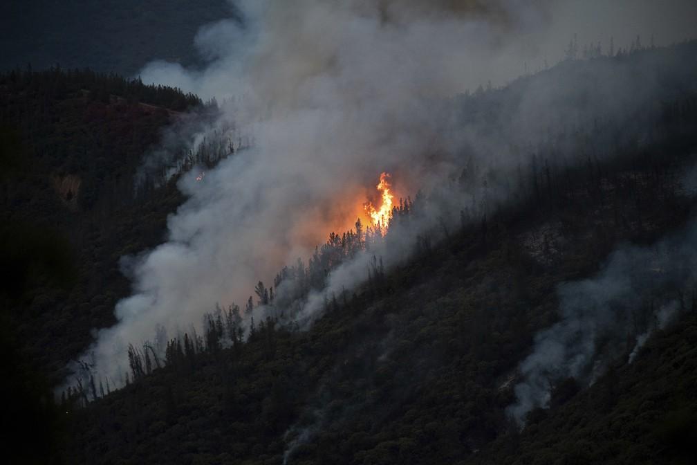 Incêndio de grandes proporções atinge área próxima ao parque Yosemite, na Califórnia (Estados Unidos) (Foto: AP Photo/Noah Berger)