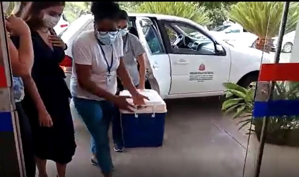 Vacina chegou nesta quinta-feira (21) a Borá — Foto: Prefeitura de Borá/Divulgação