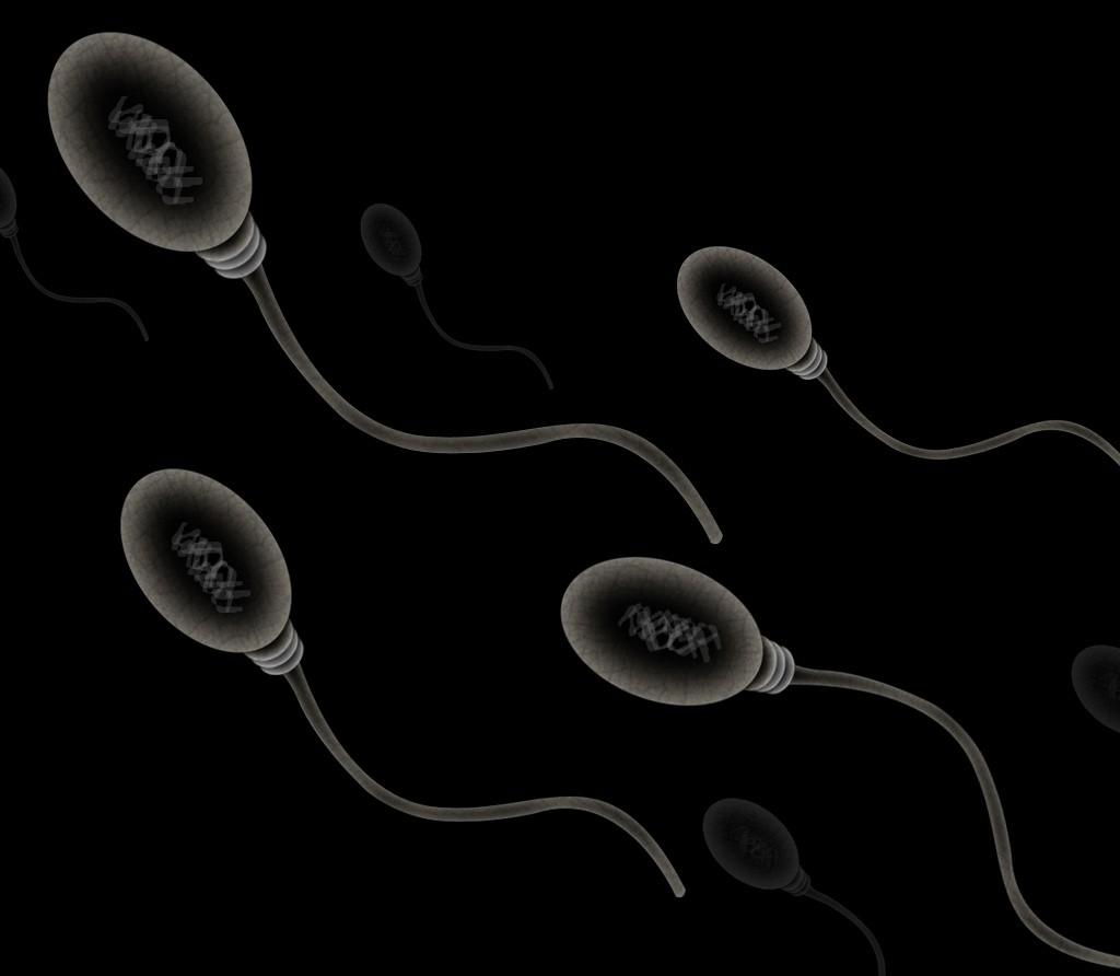 Temperatura muito alta prejudica a produção de espermatozóides (Foto: Flickr/Zappys Technology Solutions/Creative Commons)